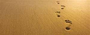 cropped-footprints.jpg
