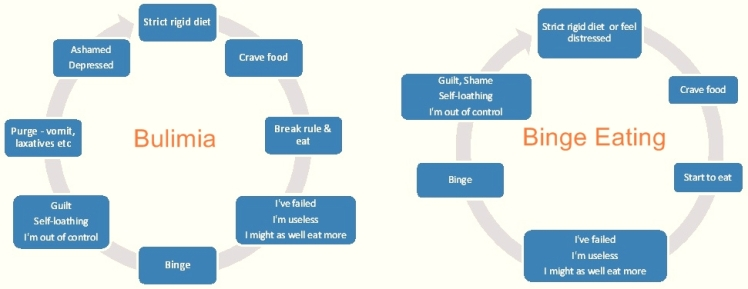 binge eating and bulimia cycles